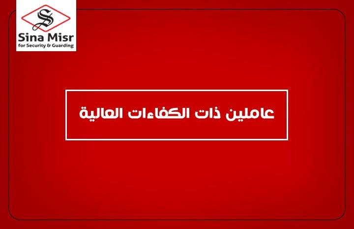 شركة سينا مصر ,عاملين ذات الكفاءات العالية