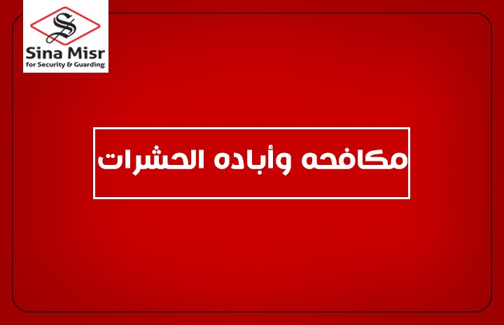 سينا مصر . أبادة الحشرات